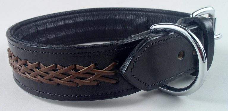Braided Leather Dog Collar