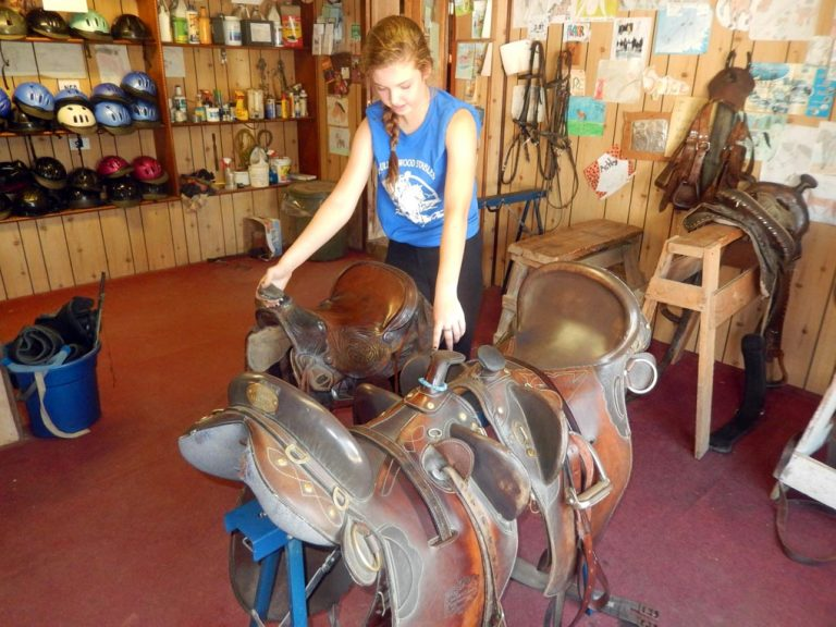 Cassidy explains the difference in horse saddles