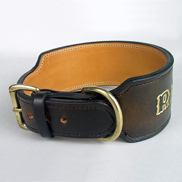 hawaii-dog-collar-4-sq.jpg