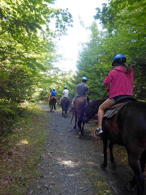 horseback trail ride